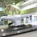 Butt_Airport
