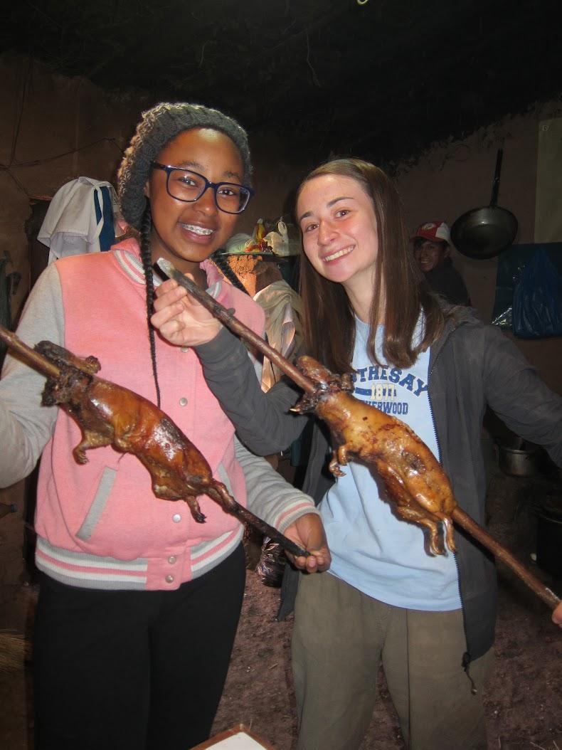 Guinea Pig Day